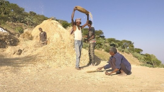 Abraham with his sons on the threshing ground