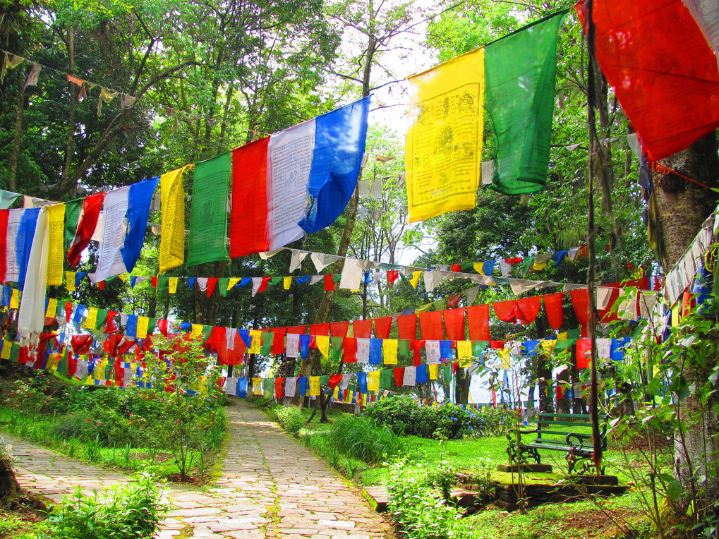 <p>Buddhism plays a big role in the religious landscape of Sikkim where such prayer flags are a common sight. These monochromatic flags are inscribed with prayers, mantras, or symbols. The colours represent the elements – fire, water, earth, air, space – of the physical body and environment. It is believed that the wind activates and carries the spiritual vibrations from the flags to the surroundings.<br /><br />Photo: Sudeshna Chaki, Khecheopalri Lake, Sikkim, India, 2014<br />Max Planck Institute for Social Anthropology</p>