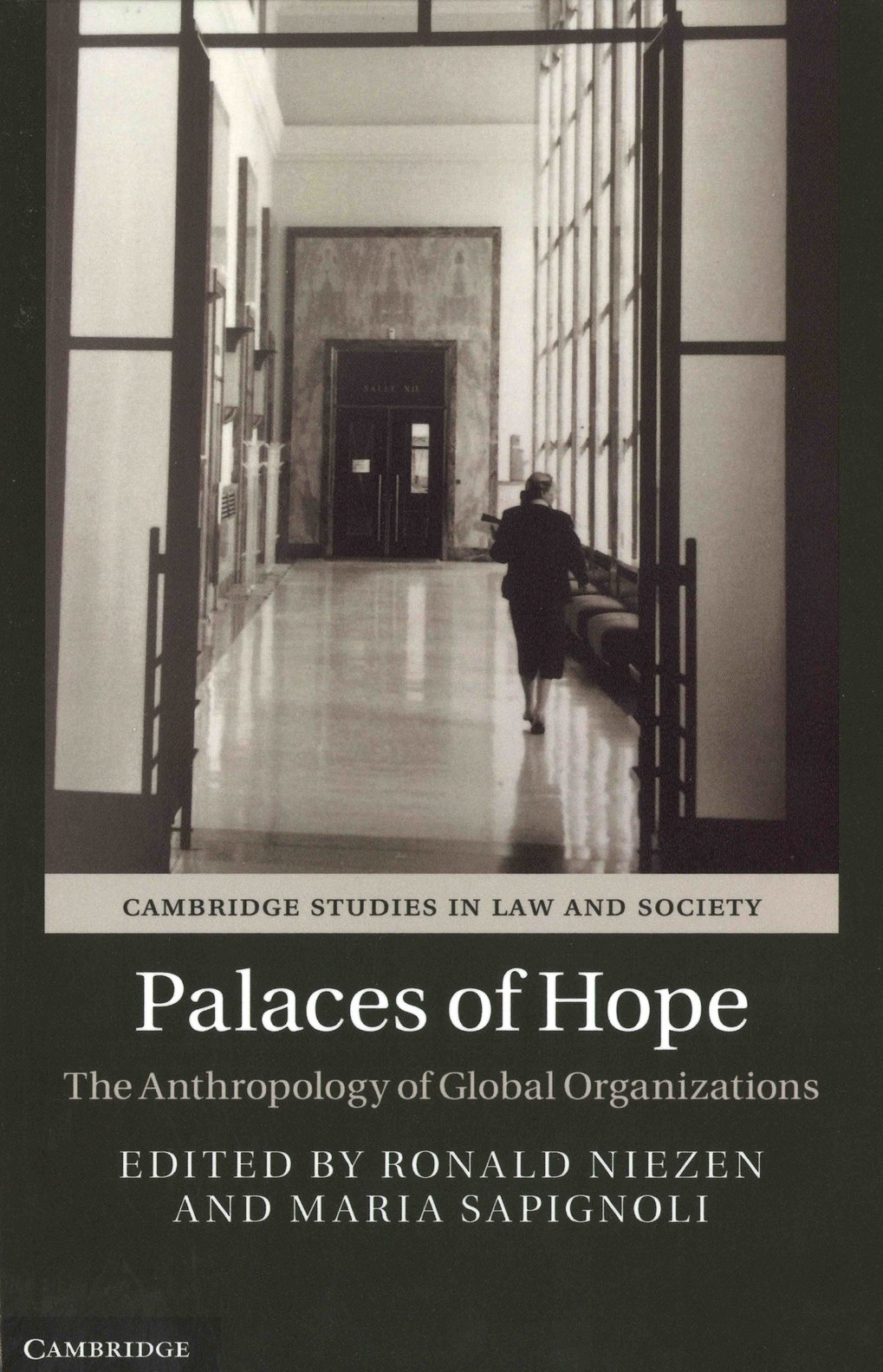 Palaces of Hope. The anthropology of global organizations