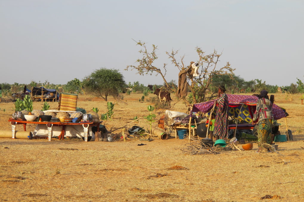 Pastoralists in Niger: The Sedentarization of Dwelling